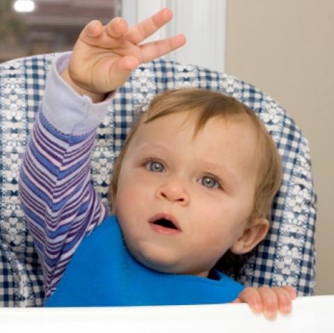 Baby Sign Lanugage: 5 Steps to Start Using Sign Language with Your Child Right Now